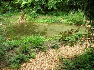 Jardin de la biodiversité à Viry-Chatillon